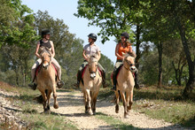 Equitation Balade - Riding