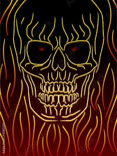 Fotografie, Obraz  Skull sketch