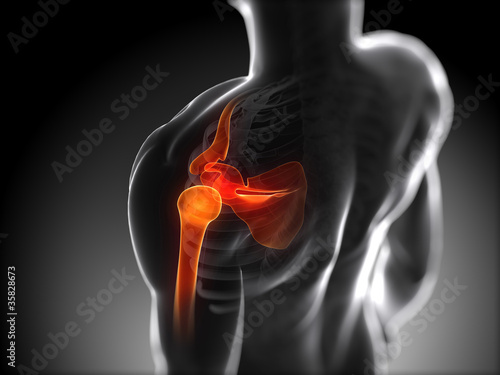 Photo 3d rendered anatomy illustration - painful shoulder