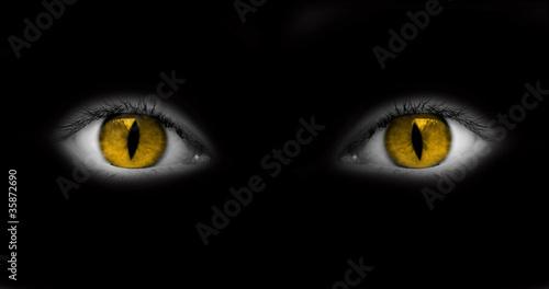 Tableau sur Toile Yeux jaunes catwoman - fond noir