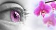 Oeil rose et orchidée