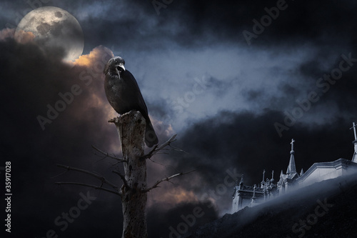 Canvas Print Halloween crow