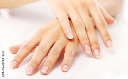Foto op Canvas Manicure Beautiful hands with french manicure