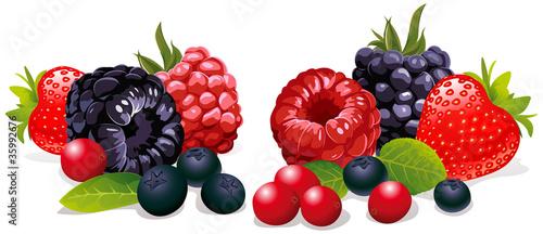Photo berries isolated