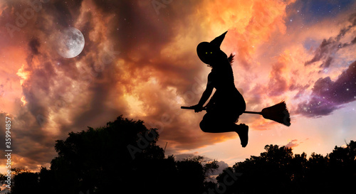 Fotografie, Obraz  Flying witch on broomstick