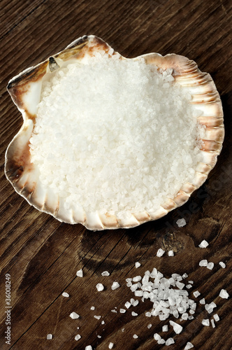 Fotografija  Coarse sea salt in scallop shell