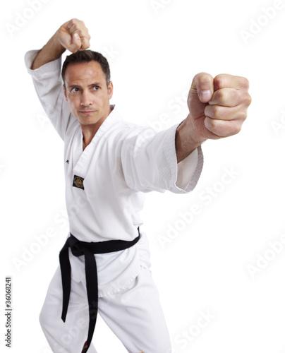 Foto-Stoff bedruckt - Taekwondo, Doppelfaust, weiß (von Tran-Photography)