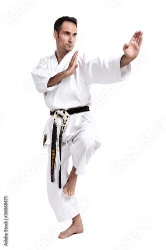 Foto-Stoff bedruckt - Karate, Kata, vor weiß 2 (von Tran-Photography)