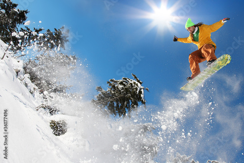 Garden Poster Winter sports Snowboarder jumping against blue sky