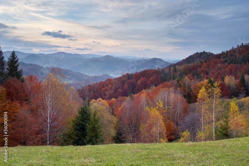Tuinposter Purper Autumn landscape in mountains