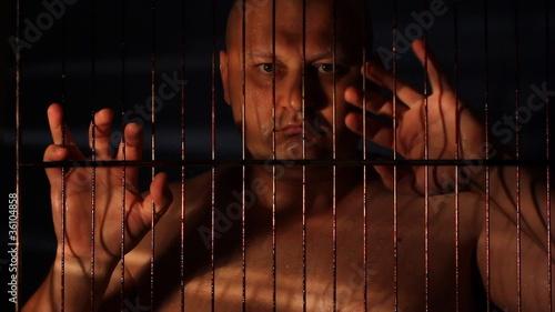 eva cassini night in jail - 500×282