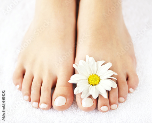 Poster Pedicure Female feet with pedicure