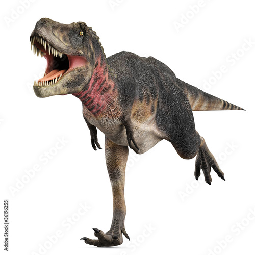 Photo  tarbosaurus running