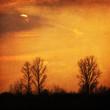 texturiertes Landschaftsbild mit Sonnenuntergang