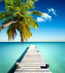 Panel Szklany Podświetlane Molo plage vacances cocotier