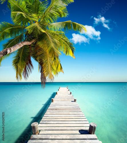 Naklejki na lodówkę plazowy-kokos