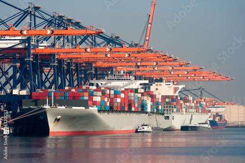 Staande foto Rotterdam Port cranes and ships
