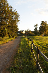 Sunny Road To The House