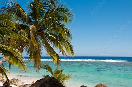 Fotografie, Obraz  Swimming in the lagoon in Rarotonga