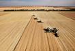 Leinwanddruck Bild - Aerial View of Harvest
