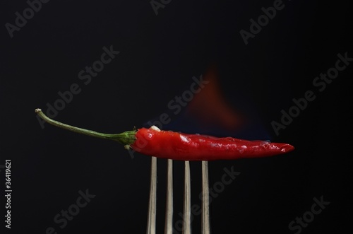Chillifeuer