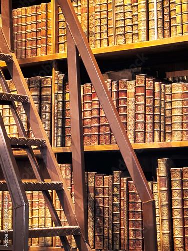 Poster Bibliotheque Buchregal Antiquariat