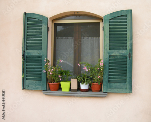 Obraz na płótnie zielone okiennice z kwiatami