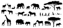 Afrika Tiere Bäume Savanne Si.