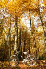 Fototapeta Rower bike