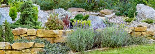 Ogród - 36515845