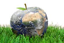 3d Apple Earth On The Grass