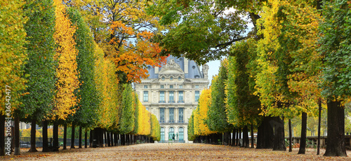 Poster de jardin Paris Autumn in Paris