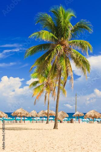 Resort at the beach in Cuba Wallpaper Mural