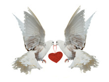 Two White Doves Holding Red He...