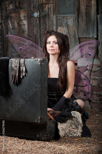 Fotografie, Obraz  Fairy With Suitcase