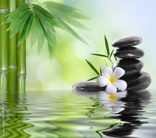 Foto op Canvas Spa spa stones with frangipani