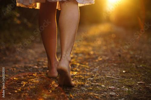 Light steps Canvas-taulu