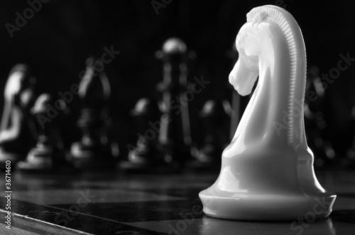 Obraz na płótnie white knight chess piece