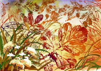 FototapetaPainting Collection : Autumn