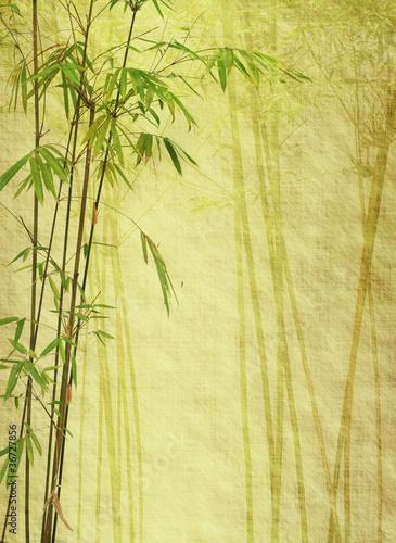 bambus-na-starej-teksturze-grunge