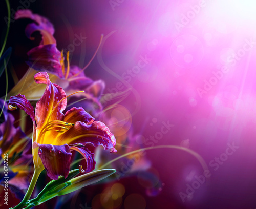 Flowers on a red background .With copy-space - 36737225