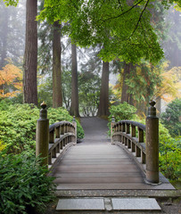 Obraz Foggy Morning at Wooden Foot Bridge at Japanese Garden