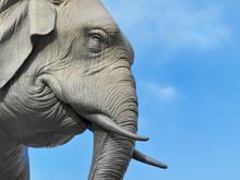 éléphants,chambéry,savoie,préfecture,quatre Sans Cul,alpes