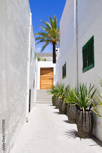 Ibiza Sant Joan Labritja San Juan white houses