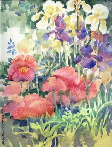 akwarela-ogrod-pelen-zoltych-czerwonych-i-fioletowych-kwiatow