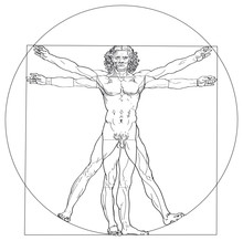 Vitruvian Man, Leonardo Da Vin...