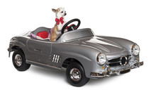 Chihuahua Puppy, 6 Months Old, Driving Convertible