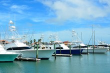 Boat Marina At Florida Usa