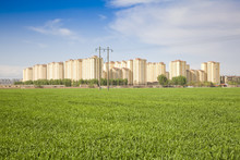 Suburb Of Wheat