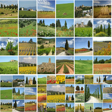 Collage With Tuscan Countrysid...